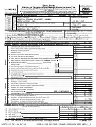 2006 Form 990 - Captiva Community Panel