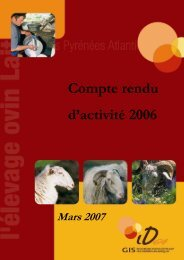 Compte rendu d'activité 2006