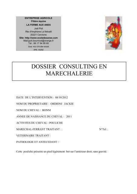 DOSSIER CONSULTING EN MARECHALERIE