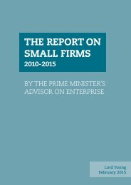 THE REPORT ON SMALL FIRMS