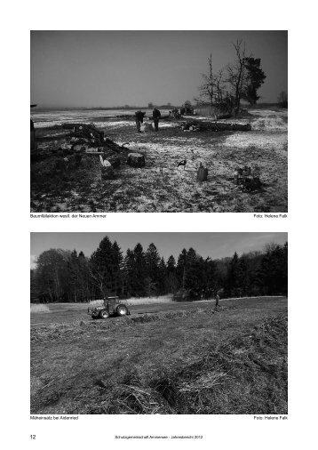 Landschaftspflege - Schutzgemeinschaft Ammersee