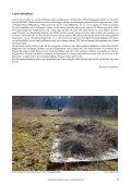 Landschaftspflege - Schutzgemeinschaft Ammersee - Page 2
