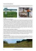 Landschaftspflege - Schutzgemeinschaft Ammersee - Page 3