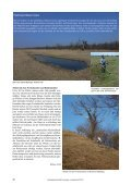 Landschaftspflege - Schutzgemeinschaft Ammersee - Page 5