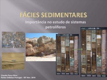 Importância no estudo de sistemas petrolíferos