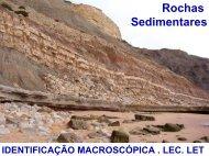 Sedimentares