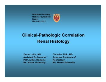 Atlas of histology with functional and clinical correlations clinical pathologic correlation renal histology fandeluxe Choice Image