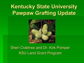 Kentucky State University Pawpaw Grafting Update