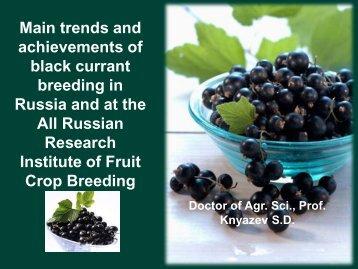 Dr Sergey Knyazev - International Blackcurrant Association
