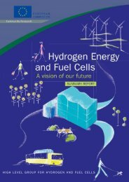 HIGH LEVEL GROUP FOR HYDROGEN AND FUEL CELLS