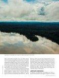 rio vida - Page 5