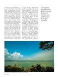 rio vida - Page 6