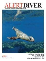 DAN 2015 Issue 3