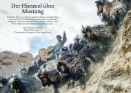 GP_3_15_Deutsch_Der Himmer über Mustang(1)
