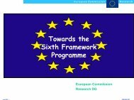 Towards the Sixth Framework Programme