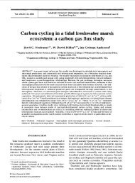 Carbon cycling in a tidal freshwater marsh ecosvstem - Inter Research