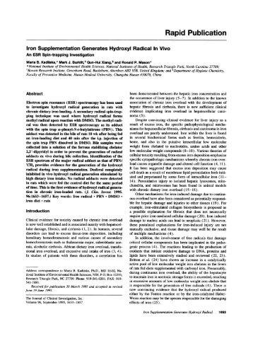 Iron supplementation generates hydroxyl radical in vivo. An ESR ...