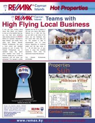 High Flying Local Business