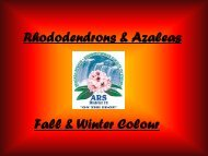 Rhododendrons & Azaleas Fall & Winter Colour