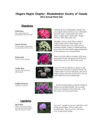 Niagara Region Chapter Rhododendron Society of Canada