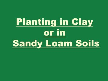 Planting in Clay or in Sandy Loam Soils