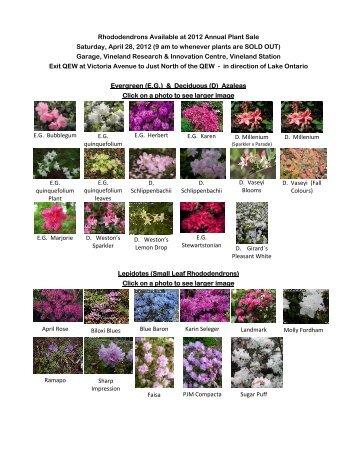 Plant Sale Slideshow & Descriptions. Sunday April 15, 2012, 2 P.M. ...