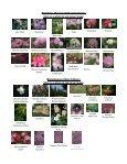 Plant Sale Slideshow & Descriptions. Sunday April 15, 2012, 2 P.M. ... - Page 2