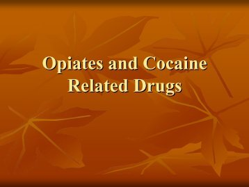 Opiates and Cocaine Related Drugs
