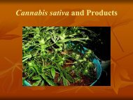 Cannabis sativa and Products