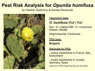 Pest Risk Analysis for Opuntia humifusa
