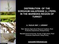 SORGHUM HALEPENSE (L.) PERS IN THE MARMARA REGION OF TURKEY