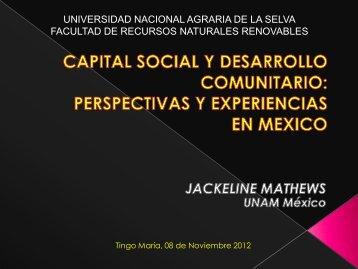 Experiencia de desarrollo comunitario en México - Universidad ...