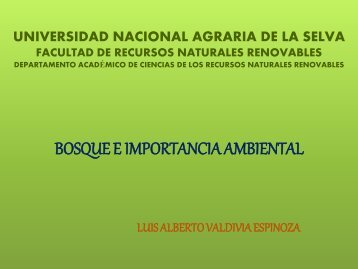 BOSQUE E IMPORTANCIA AMBIENTAL