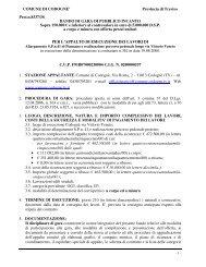 COMUNE DI CODOGNE' Provincia di Treviso Prot.n.8337/3S ...