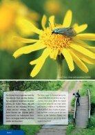 Broschüre Stadt Büren Touristik 2015_09-Web - Page 6