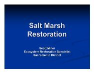 Salt Marsh Restoration