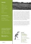 saules têtards - Page 2
