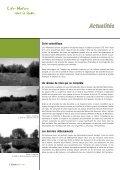 saules têtards - Page 4
