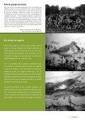 saules têtards - Page 7