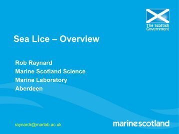 Sea Lice – Overview