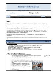 Luseregistrerings-skjema