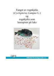 Fangst av rognkjeks (Cyclopterus Lumpus L.) og rognkjeks som lusespiser på laks