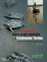 Investigating MassScale Mortality in Freshwater ... - WWF-Pakistan