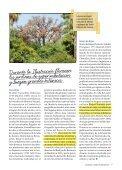 Árboles singulares - Page 7