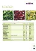Salatmischungen Blattsalate - Seite 2