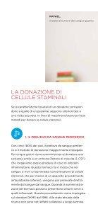 Informationen über die DKMS (italienisch) - Page 6