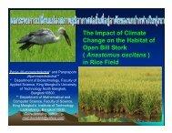 present slide bird - TGO Conference