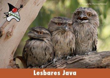 Lesbares Java