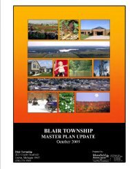 Blair Township Master Plan Update, October 2009