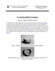Creating Dish Gardens - UNH Cooperative Extension - University of ...